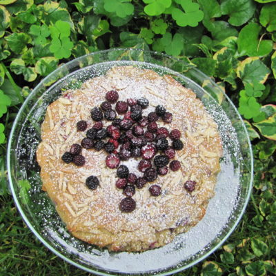 berry cake in the grass
