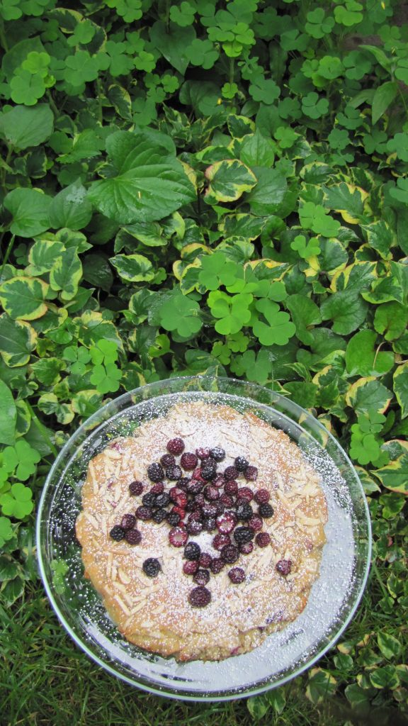 Berry Cake in the garden
