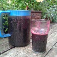 Spirulina, Beet & Raw Protein Smoothie
