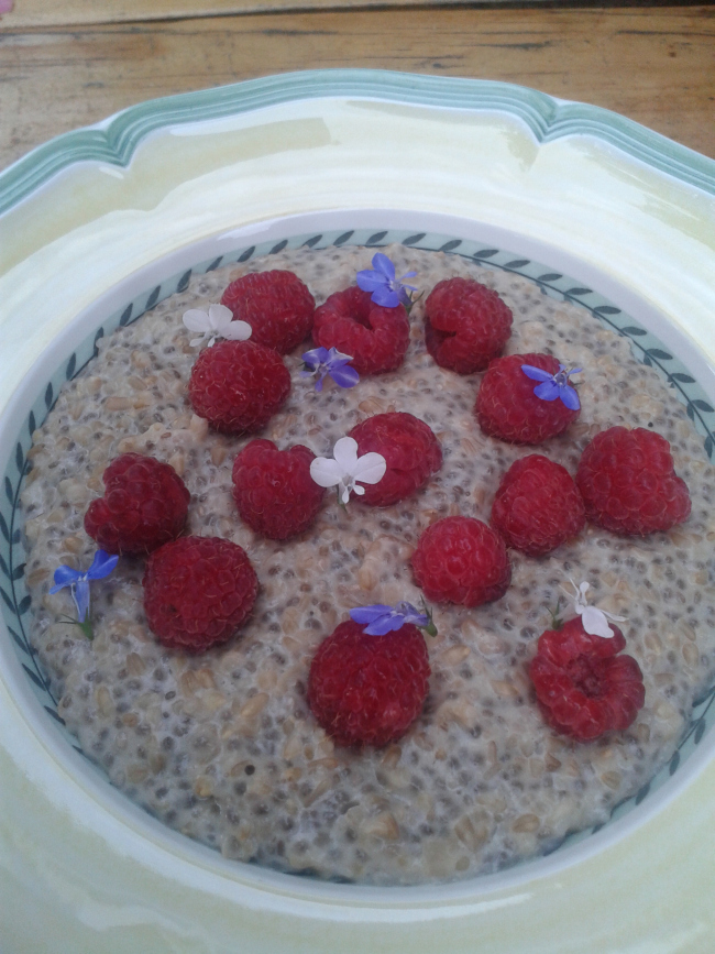 Healthy, fibre rich, PORRIDGE with raspberries