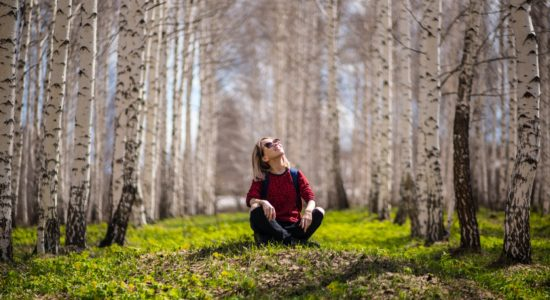 Shinrin-Yoku – Forest Bathing