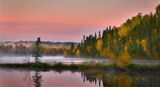 Boreal Shield – A Changing Landscape