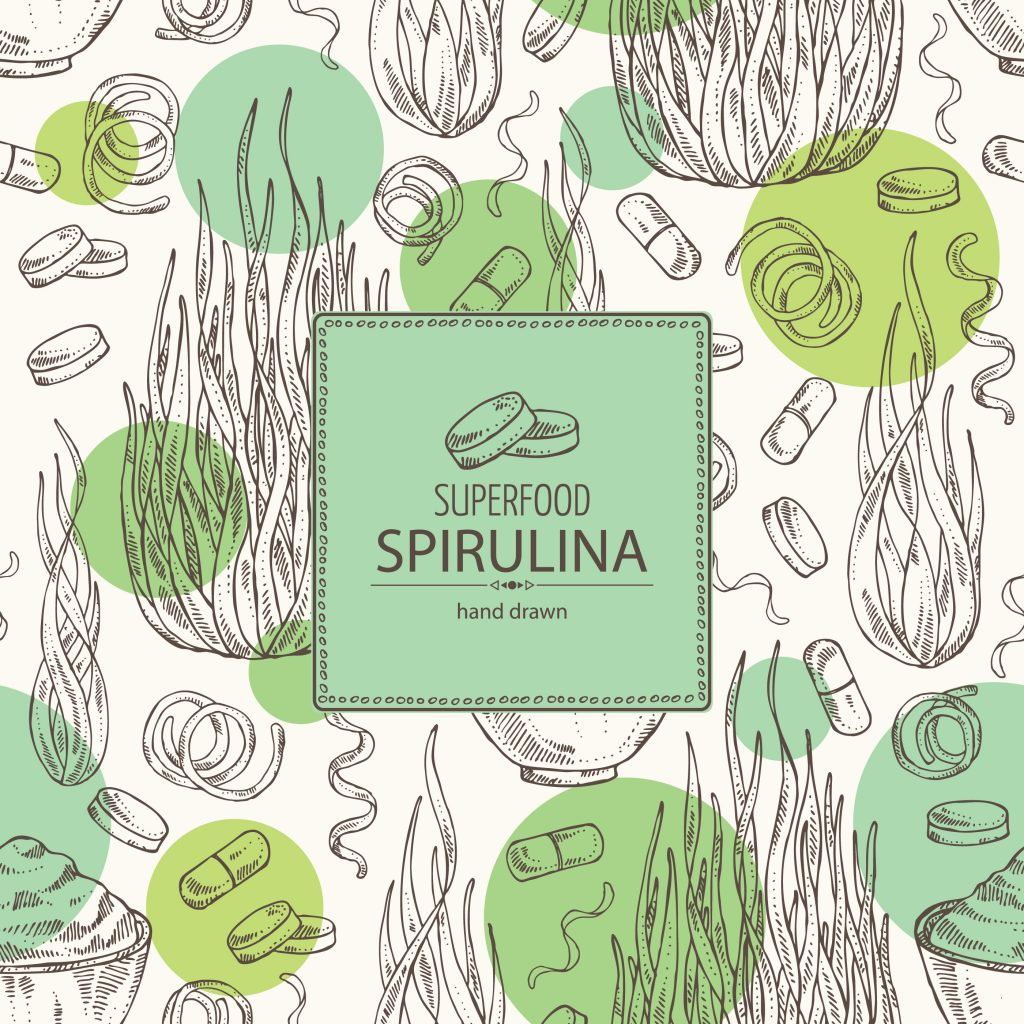 Spirulina Drawing