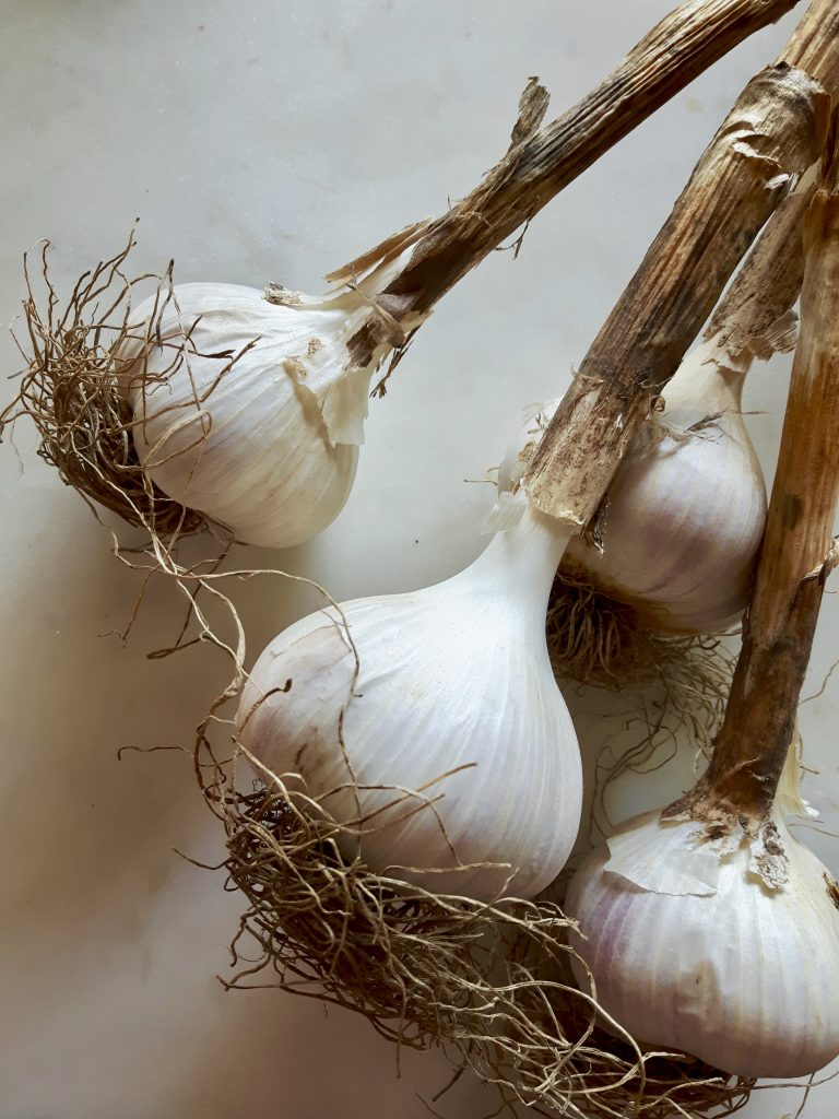 polish garlic