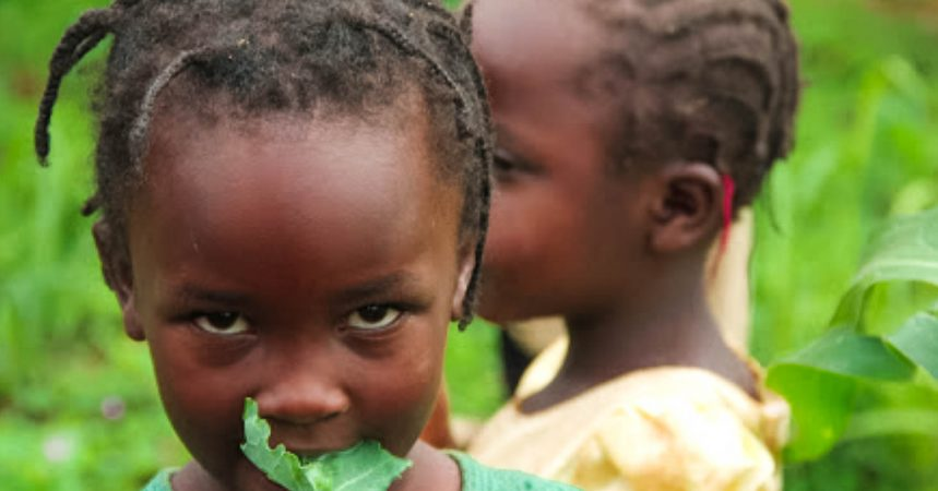 Organics 4 orphans Children eating kale