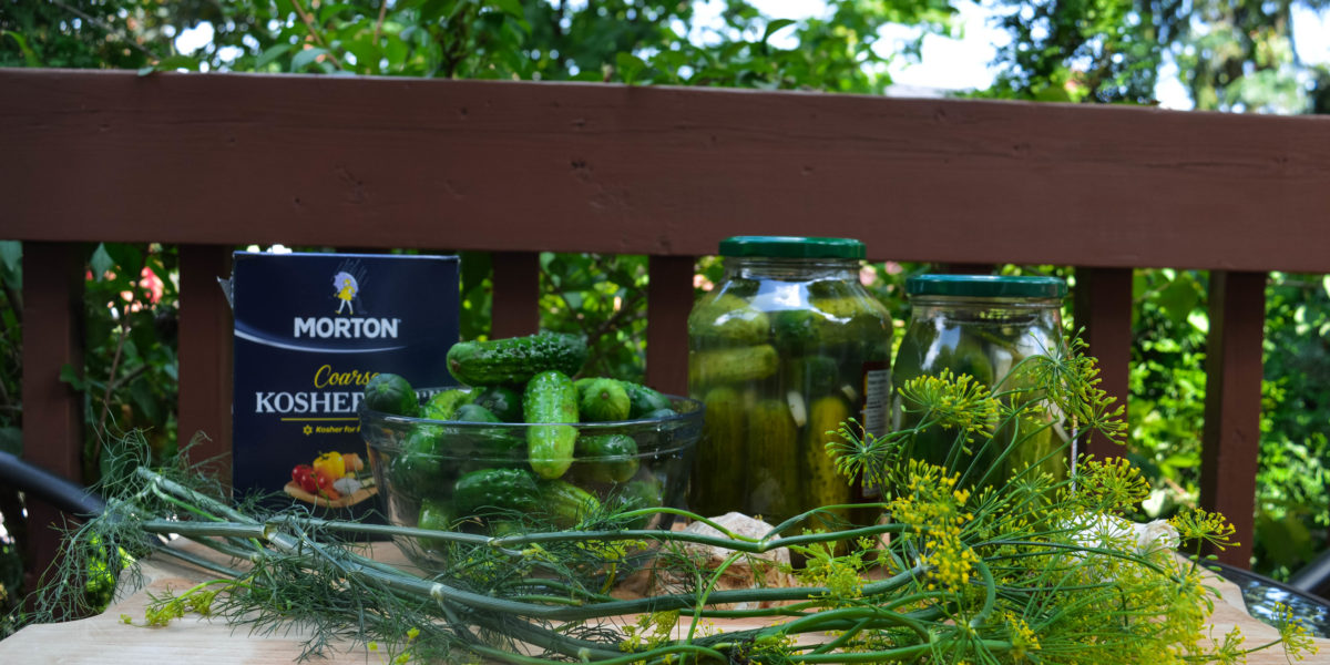 Naturally Fermented Dill Pickles