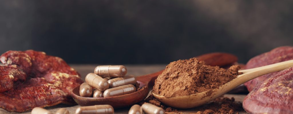 Reishi capsules and powder